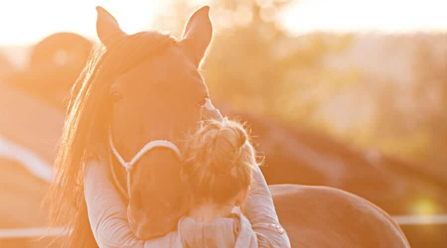 Pferdeosteopathie und Pferdephysiotherapie in Reutlingen mit Sarah Henne