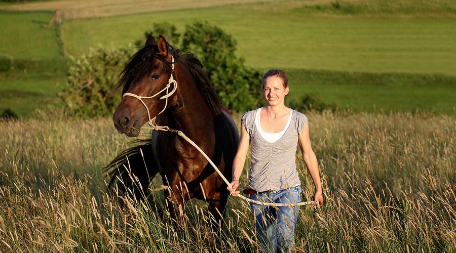 Pferdeakupunktur in Reutlingen mit Sarah Henne - Tierheilpraktikerin für Pferde