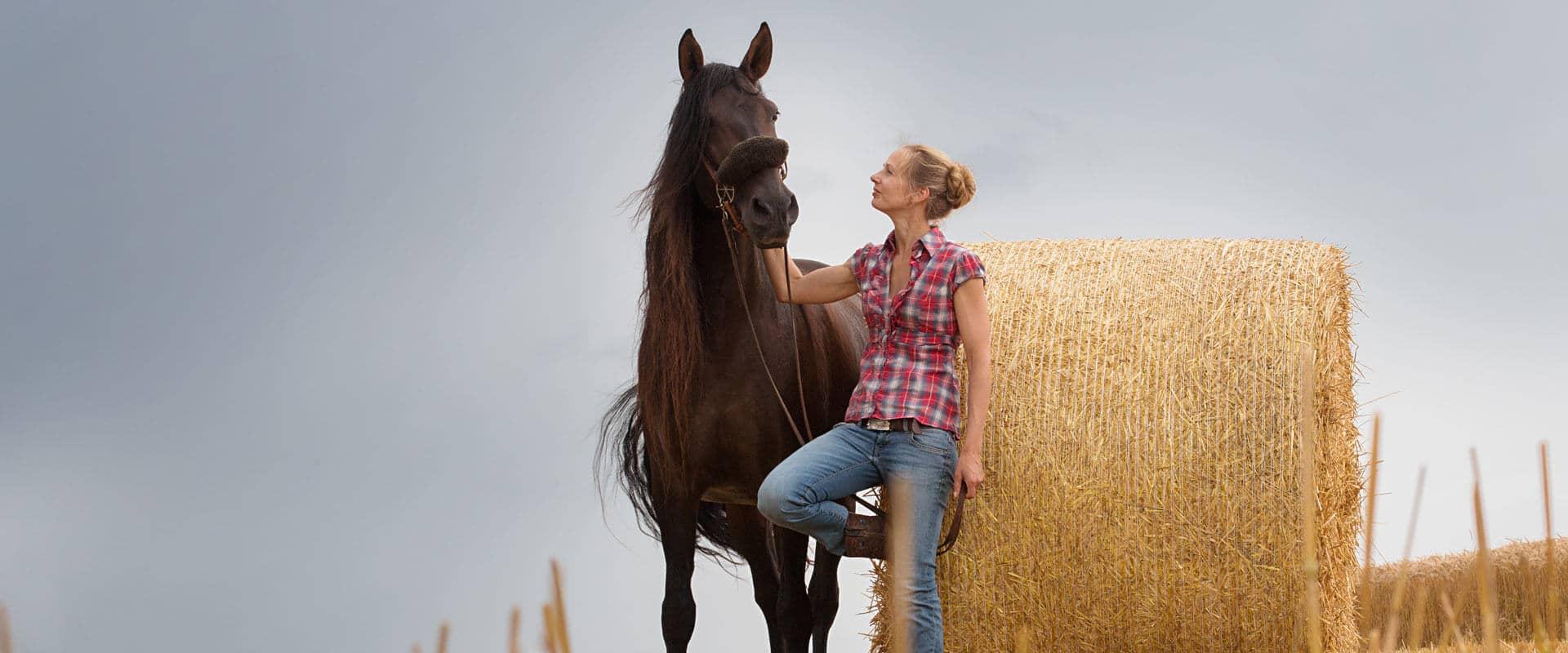 Pferdeakupunktur in Tübingen, Reutlingen und Stuttgart mit Sarah Henne